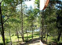 Forest Glamping resort Blaguško